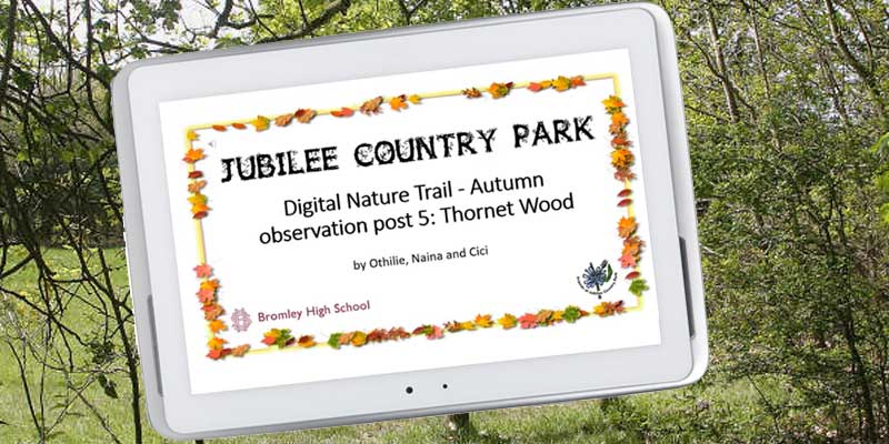 How to provide digital information in the park using video